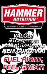 hammer_banner
